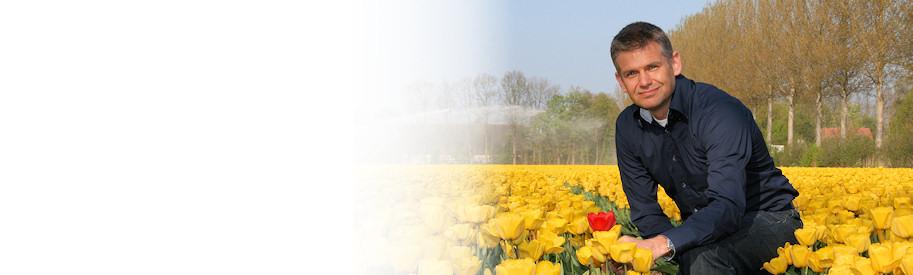 Doornbos Werving & Selectie Tulpen in mei